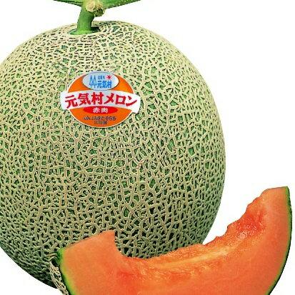 【ふるさと納税】J008022 深川産赤肉メロン(季節限定)