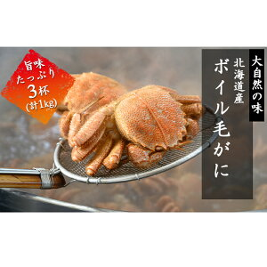 【ふるさと納税】北海道産ボイル毛蟹3杯(約1kg) 【毛カニ・蟹・ボイル毛蟹・カニ・魚貝類・加工食品】