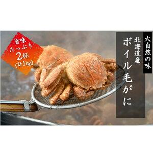 【ふるさと納税】北海道産ボイル毛蟹2杯(約1kg) 【毛カニ・蟹・ボイル毛蟹・カニ・魚貝類・加工食品】