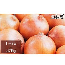 【ふるさと納税】新しのつ産 玉ねぎLサイズ 約5kg 【野菜・玉ねぎ・たまねぎ】 お届け:2021年9月上旬から随時出荷