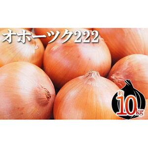 【ふるさと納税】新しのつ産 玉ねぎ「オホーツク222」約10kg 【野菜・玉ねぎ・たまねぎ・タマネギ】 お届け:2021年10月〜随時出荷