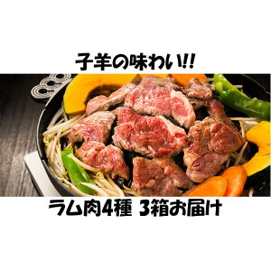 【ふるさと納税】子羊の味わい 〜4種のラム肉 3箱セット〜 【定期便・お肉・羊肉・ラム肉・肉の加工品】