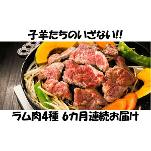 【ふるさと納税】【6カ月連続】子羊の味わい 〜4種のラム肉セット〜 【定期便・お肉・羊肉・ラム肉・肉の加工品】