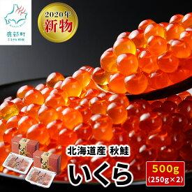 【ふるさと納税】2020年新物・北海道産いくら 500g(250g×2パック)小分けだから食べやすい! イクラ D1