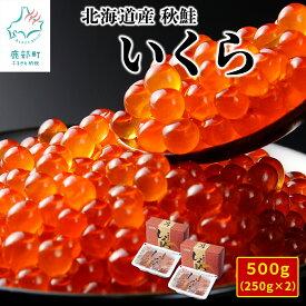 【ふるさと納税】 北海道産いくら 500g(250g×2パック)小分けだから食べやすい! イクラ 魚介類