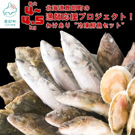 【ふるさと納税】訳あり 鮮魚セット(4~4.5kg) 漁師応援プロジェクト! 冷凍 コロナ対策 海鮮 海産