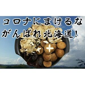 【ふるさと納税】★がんばれ北海道★[北海道厚沢部産]えぞまいたけ きのこ鍋セット 【鍋セット・野菜・きのこ】