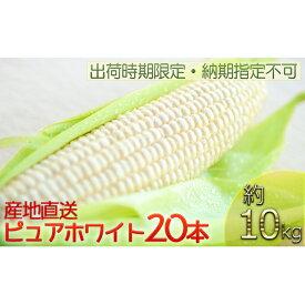 【ふるさと納税】【出荷時期限定・納期指定不可】北海道厚沢部産 白いとうもころし ピュアホワイト20本 約10kg 【野菜・とうもろこし】 お届け:2020年8月3日〜9日頃まで