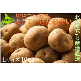 【ふるさと納税】ようていじゃがいも【きたかむい】Lサイズ10kg≪北海道ようてい産≫ 【野菜・いも・ジャガイモ】 お届け:2020年1月中旬〜2020年4月下旬まで