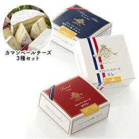 【ふるさと納税】【クレイル特製】・カマンベールチーズ3種セット 【乳製品】