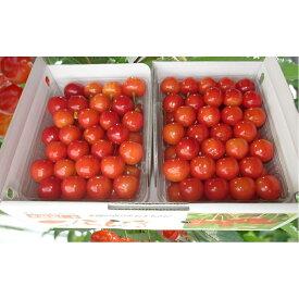 【ふるさと納税】農園厳選さくらんぼ「紅秀峰」2Lサイズ以上1kg(品質:ギフト向け) 【果物類・フルーツ・さくらんぼ・チェリー】 お届け:2020年7月15日〜30日頃