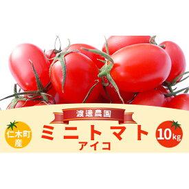 【ふるさと納税】北海道仁木町産ミニトマト【アイコ】1kg×10箱 【野菜・ミニトマト・トマト】 お届け:2021年7月下旬〜10月上旬