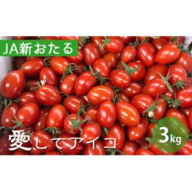 【ふるさと納税】北海道仁木産ミニトマト【愛してアイコ】3kg 【野菜・ミニトマト・とまと・トマト・3kg】 お届け:2021年8月上旬〜2021年10月上旬