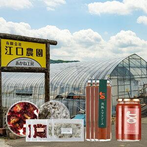 【ふるさと納税】[C08]江口農園イタリアンファミリーセット