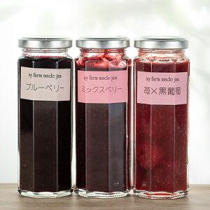 【ふるさと納税】[C12]江口農園果実ぎっしりジャム3本セットA