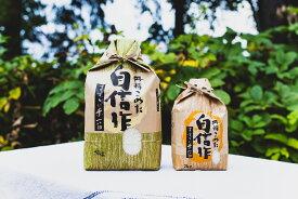 【ふるさと納税】賀集農産 無洗米ゆめぴりか10kg