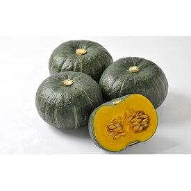 【ふるさと納税】北海道月形町産のかぼちゃ「虹ロマン」約10kg 1箱 【野菜】 お届け:2020年9月初旬〜9月末頃まで