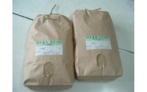 【ふるさと納税】ななつぼし玄米定期便(15kg×5回)  ※偶数月に発送