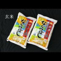 【ふるさと納税】 1002 玄米ななつぼし5kg×2袋