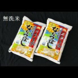 【令和2年度産】【ふるさと納税】 1311 無洗米ななつぼし5kg×2袋