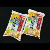 【ふるさと納税】 1005 ゆめぴりか5kg×2袋(楽天ふるさと納税先行受付)