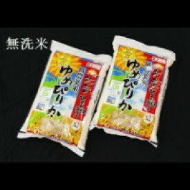 【ふるさと納税】 1501 無洗米ゆめぴりか5kg×2袋