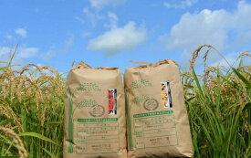 【ふるさと納税】【玄米】令和2年産 助安農場のゆめぴりかとななつぼし(各5kg)