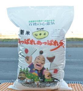【ふるさと納税】令和元年産 稲華屋のあっぱれあっぱれ米(ゆめぴりか無洗米・10キロ)
