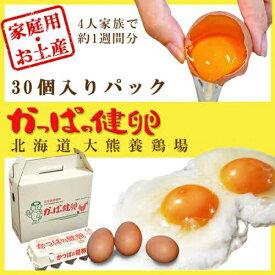 【ふるさと納税】大熊養鶏場 かっぱの健卵 30個入り