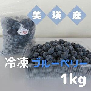 【ふるさと納税】びえいハスカップファーム 美瑛産冷凍ブルーベリー1kg[011-18]