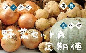【ふるさと納税】美瑛選果 野菜セットA 定期便[041-02]