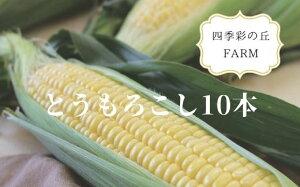 【ふるさと納税】[012-23]四季彩の丘FARM とうもろこし(10本)