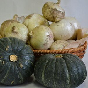 【ふるさと納税】夏野菜セット(白玉ねぎ5kg、坊っちゃんかぼちゃ3kg)