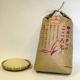 【ふるさと納税】【2021年度米】お米ななつぼし 10kg(精米)