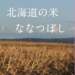 【ふるさと納税】山内農園 ななつぼし 減農薬(クリーン米)10kg【無洗米】