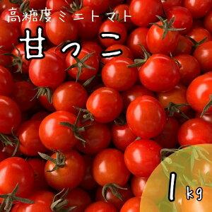 【ふるさと納税】北海道中富良野産の高糖度ミニトマト《甘っこ》1kg