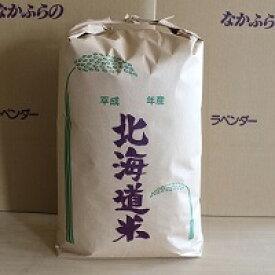 【ふるさと納税】ななつぼし10kg(中富良野産)