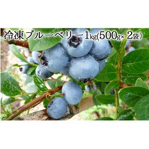【ふるさと納税】自家農園産・冷凍ブルーベリー1kg(500g×2袋) 【果物 果実 フルーツ セット 冷凍 詰め合わせ ブルーベリー】