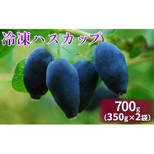 【ふるさと納税】自家農園産・冷凍ハスカップ700g(350g×2袋) 【果物類・フルーツ・加工品・惣菜・冷凍・ハスカップ】 お届け:2021年9月上旬から順次出荷