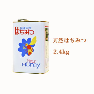 【ふるさと納税】北海道美深産 天然はちみつ2.4kg(一升缶) 【蜂蜜・はちみつ】
