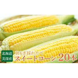 【ふるさと納税】北海道 美深町産 スイートコーン20本 【野菜・とうもろこし】 お届け:2020年8月中旬〜2020年9月中旬