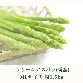 【ふるさと納税】北海道 美深町産 グリーンアスパラ MLサイズ約1.5kg(秀品) 【野菜】 お届け:2020年5月中旬〜2020年6月下旬