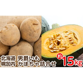 【ふるさと納税】北海道幌加内産じゃがいも(男爵)・かぼちゃ詰合せ 約15kg【2020年秋出荷】 【野菜・じゃがいも】 お届け:2020年10月初旬〜2020年11月中旬