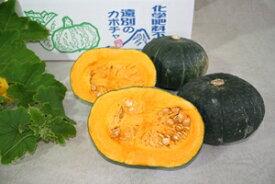 【ふるさと納税】有機JAS取得品遠別産「かぼちゃ(らいふく5kg)」