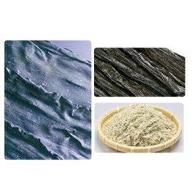 【ふるさと納税】北海道礼文島の昆布を味わうセット 【海藻・のり】