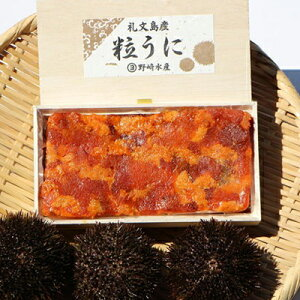 【ふるさと納税】塩うに(エゾバフンウニ)100g 【魚貝類・ウニ】