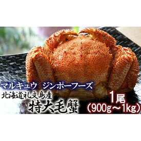 【ふるさと納税】北海道礼文島産 急速冷凍特大毛蟹(900g〜1kg)1尾 【毛カニ・蟹・かに・カニ・900g〜1kg】