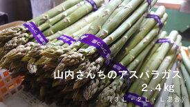 【ふるさと納税】山内さんちのアスパラガス 2.4kg (3L・2L・L混合 )