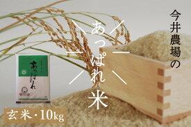 【ふるさと納税】令和2年産 今井農場 あっぱれ米10kg(玄米)
