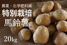 【ふるさと納税】北海道津別町産 特別栽培じゃがいも 20kg